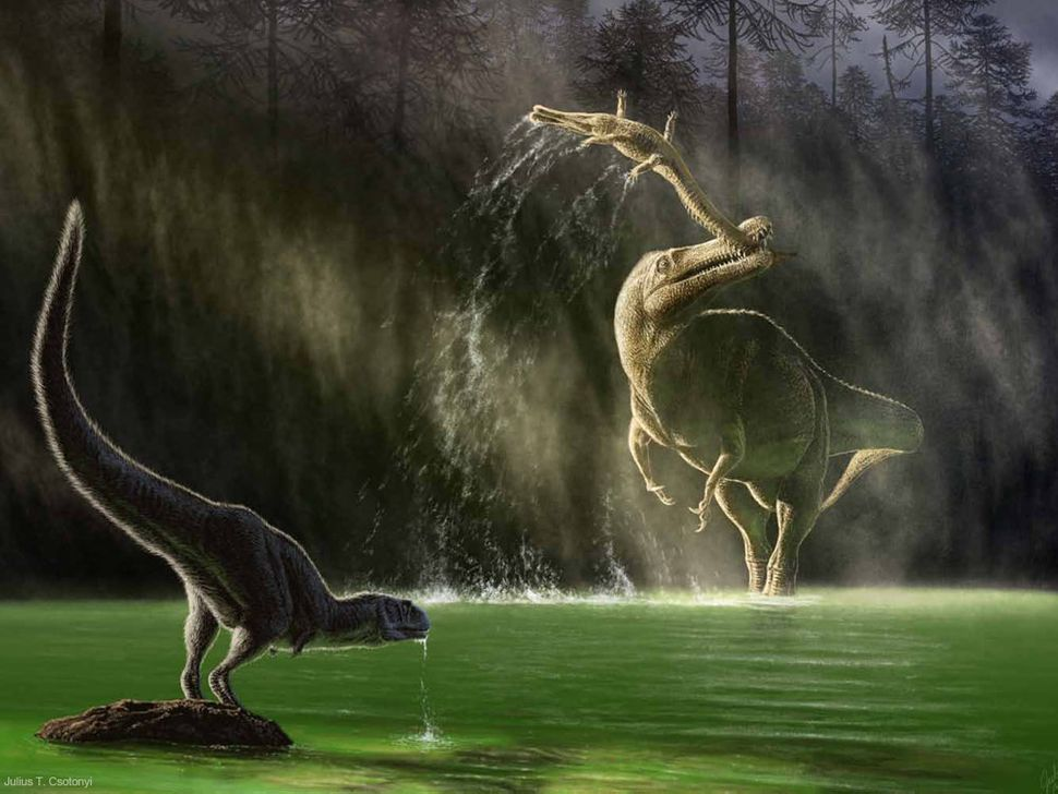 This scene is from Niger during the Cretaceous period (145-66 million years ago). The dinosaur Suchomimus, of the spinosaurid