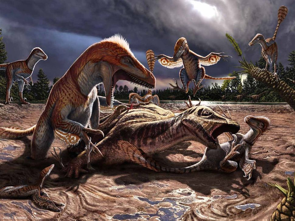 This image reenacts a moment in the last few hours of life of a pack of Utahraptor (a theropod dino) and the Hippodraco (an i
