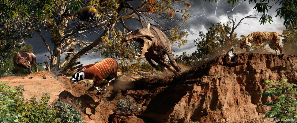 Around 33.9 million to 23 million years ago, the Oligocene epoch was ruled by giant rhinos, fierce mammalian predators called