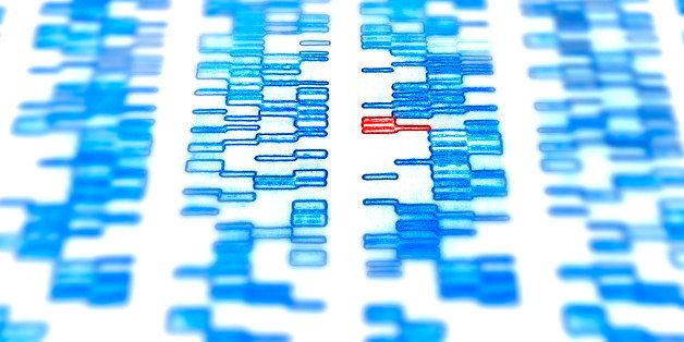 DNA gel with CATG genetic code - Cytosine, Adenine, Thymine and Guanine are amino acids that form the basic building blocks o