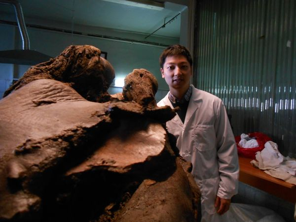 Insung Hwang, a cloning researcher at the SOOAM Biotech Research Center, with mammoth during autopsy.