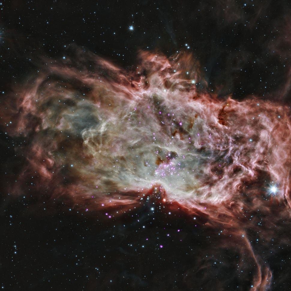 "This composite image shows one of the clusters, NGC 2024, which is found in the center of the so-called <a href=""http://www.j"