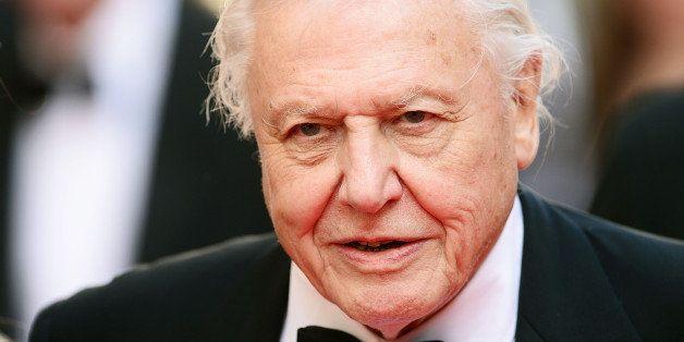 LONDON, ENGLAND - MAY 18:  Sir David Attenborough attends the Arqiva British Academy Television Awards at Theatre Royal on Ma