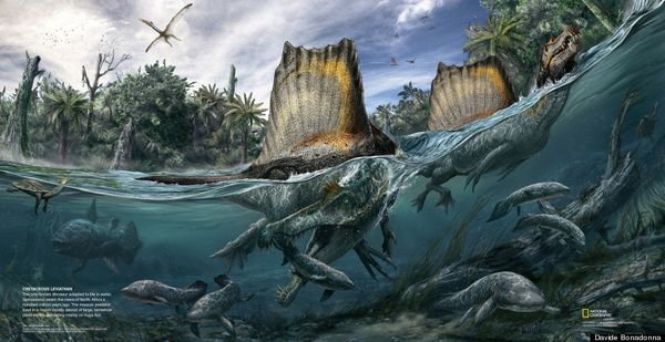 Of the hundreds of types of dinosaurs that have been discovered, none has ever been shown to have been adapted for life in th