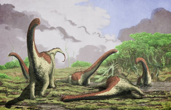 "A <a href=""https://www.huffpost.com/entry/titanosaur-africa-new-dinosaur-species_n_5786216?1420035249"" target=""_blank"">new ""t"