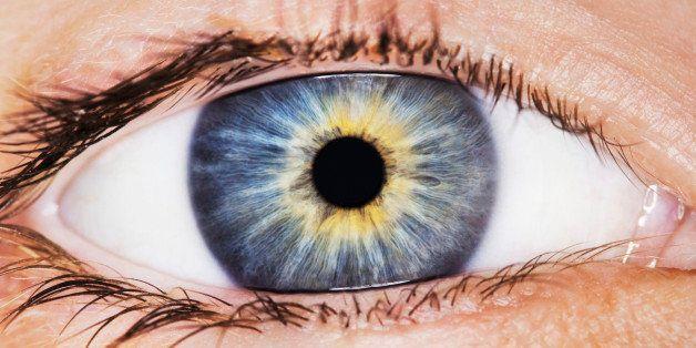 Macro shot of bright blue human eye
