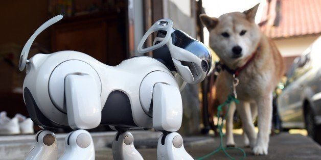 TO GO WITH AFP STORY: Lifestyle-electronics-Japan-robot-Sony by Miwa Suzuki