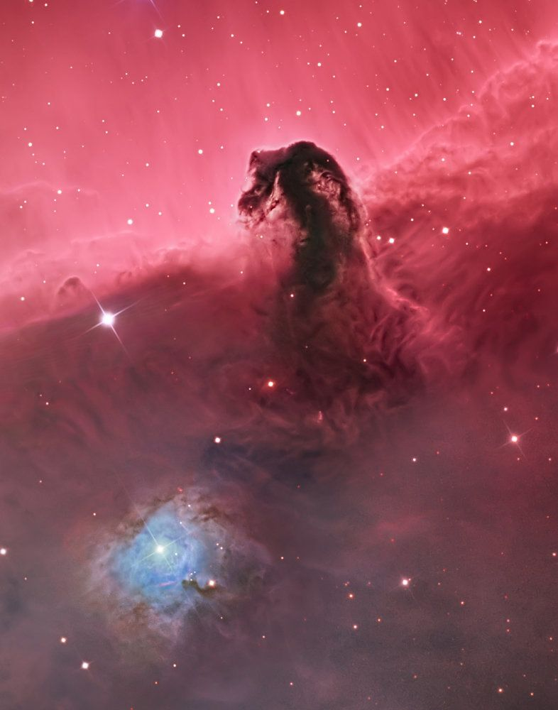 Deep Space: Horsehead Nebula (IC 434) © Bill Snyder
