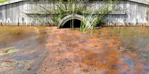 Sewage drainage system with polluted water