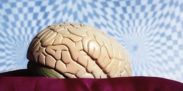 An anatomical model of the human brain sits in front of a  distorted, psychedelic looking background. Symbolizing psychedelic