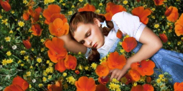 Judy Garland (1922-1969), US actress and singer, sleeping in a field of red poppies and yellow flowers in a publicity still i