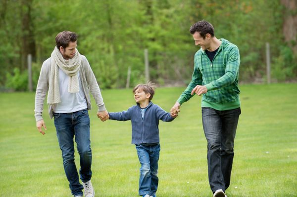 "A new article which <a href=""http://www.ncbi.nlm.nih.gov/pubmed/25240028"" target=""_blank"">reviews studies of gay men's parent"