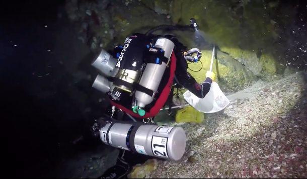 Taucher bewundert seltenen Fisch – und merkt nicht, was über ihm passiert