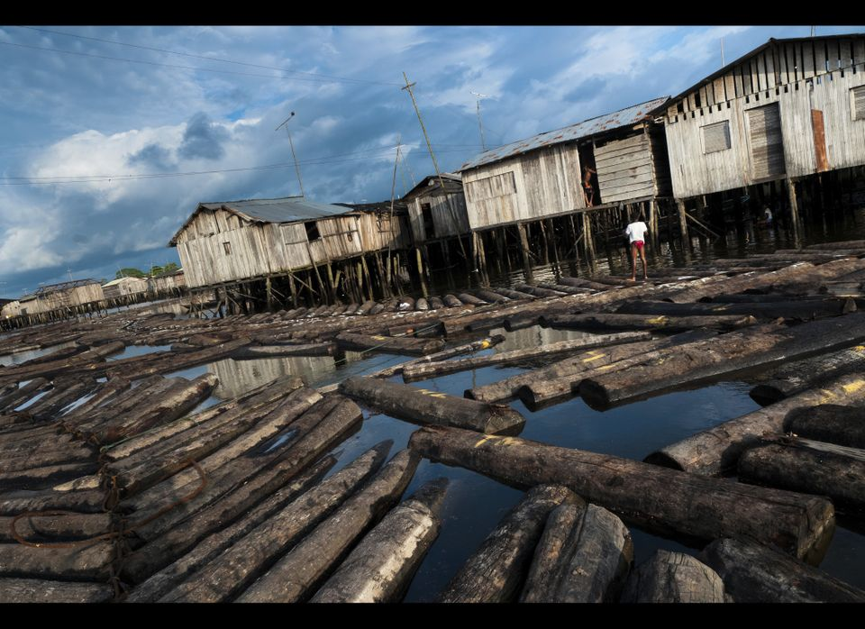 View of logs floating in the water  in a stilt house area close to Tumaco on June 11, 2010 in Tumaco, Colombia. Tens of sawmi