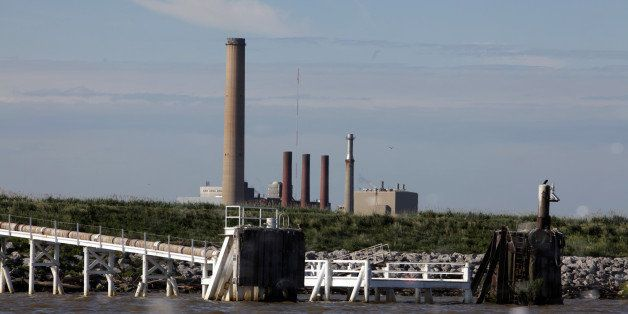 Large numbers of fish die in the cooling intakes at the Bay Shore coal plant on Maumee Bay in Oregon, Ohio. (Nancy Stone/Chic
