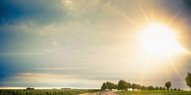 Germany, Saxony, Road through farm land