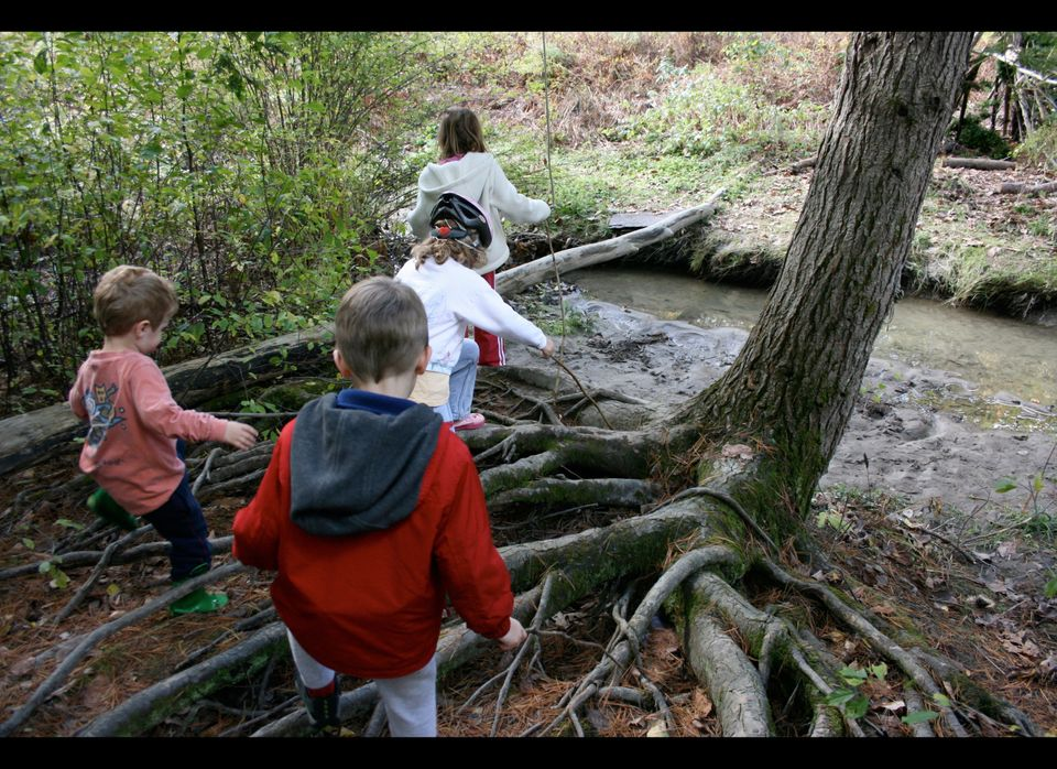 Even in the most urban parts of America, natural beauty can be found just a few miles from home. Take your child on a nature