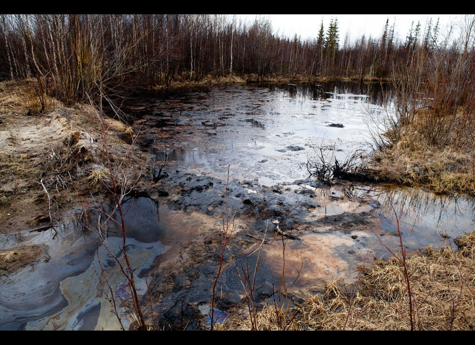 Location: Usinsk, Russia. Oil from Russian drilling operations gushes from damaged pipelines directly into local rivers. Tree