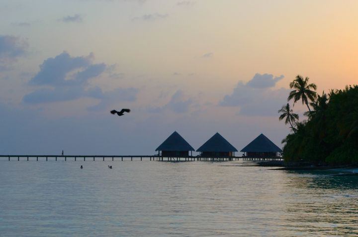 midnight at maldives