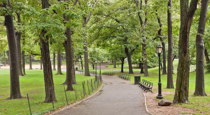 Description 1 One of the paths in en:Central Park | Central Park  in en:New York | New York . 1 Uno de los senderos en es:Cen