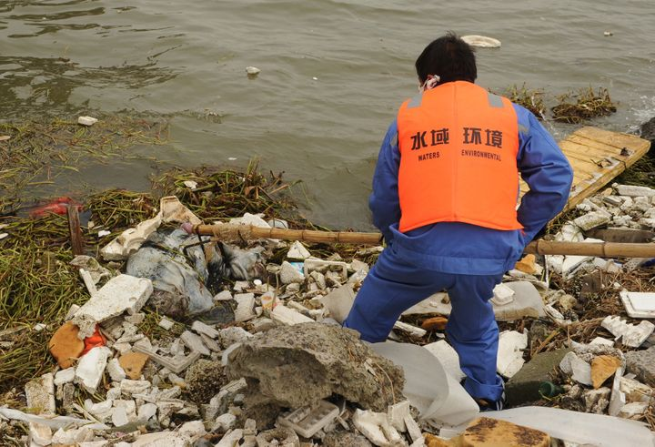 A sanitation worker collects a dead pig from Shanghai's main waterway on March 11, 2013. Nearly 3,000 dead pigs have been fou