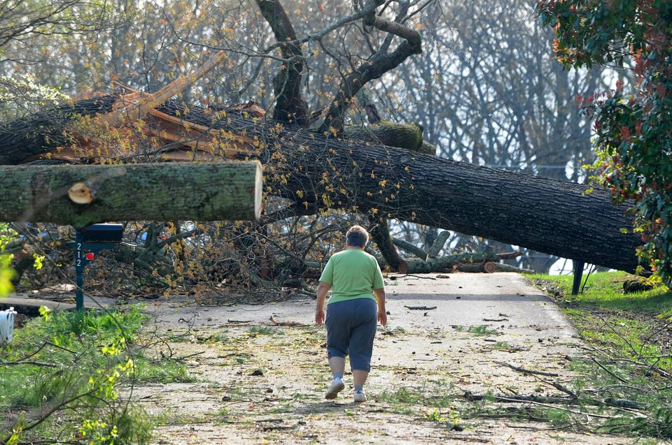 Resident Barbara Baic walks among trees felled by a possible tornado Friday, April 12, 2013, in Madisonville, Tenn. Local eme