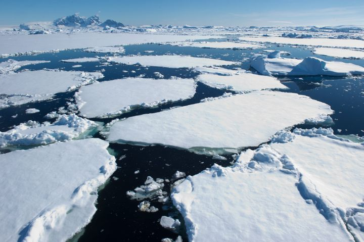 Thick ice floes float on the Southern Ocean on a sunny day in Antarctica.