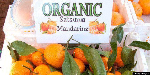 Organic Satsuma manarins at farmers market