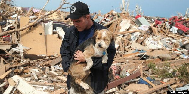 MOORE, OK - MAY 21:  Sean Xuereb recovers a dog from the rubble of a home that was destroyed by a tornado on May 21, 2013 in