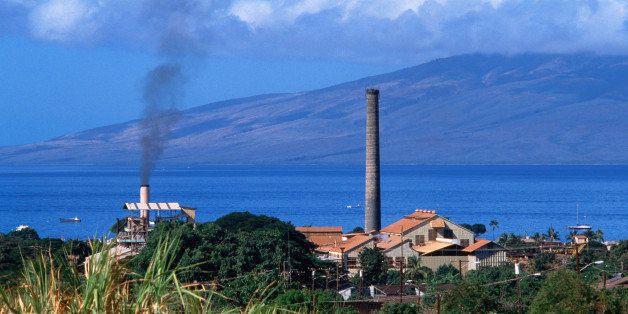 Lahaina, Maui, Hawaii, United States, North America
