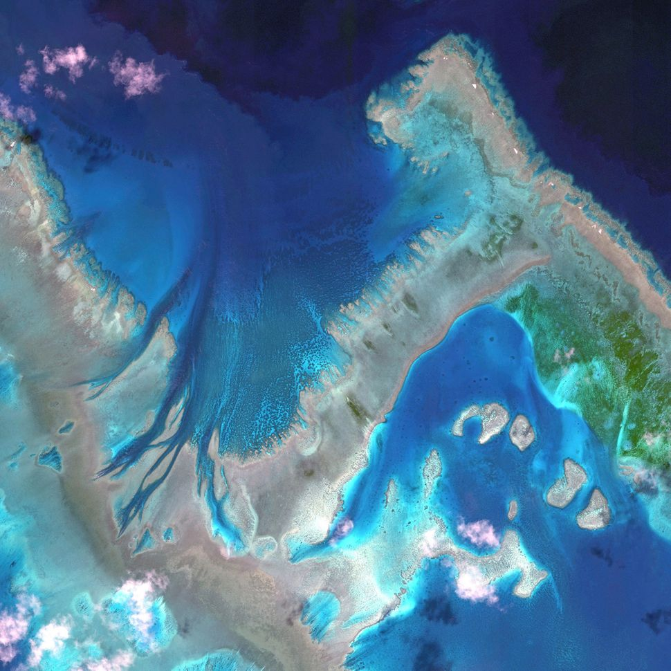 This is a satellite image of The Great Barrier Reef, Australia, collected on April 22, 2013. (Photo DigitalGlobe via Getty Im