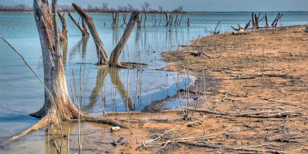[UNVERIFIED CONTENT] The drought in North Texas has drained significant amounts of water from Lake Lewisville (near Dallas) and has exposed tree trunks that were once submerged. The shoreline has receded by dozens of feet from the bank and the drought has severely affecting boating and fishing.