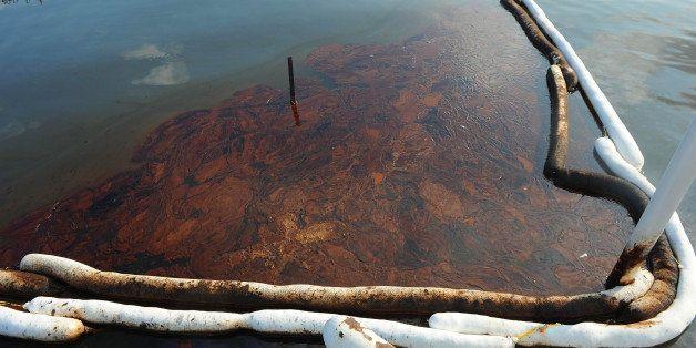 GRAND ISLE, LA - JUNE 19:  Oil pools in between booms in Barataria Bay June 19, 2010 near Grand Isle, Louisiana. The BP oil s