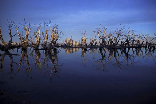In this May 7, 2013 photo, trees are reflected in water in Epecuen,  a village that once was submerged in water in Argentina.