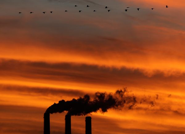 In May, federal scientists announced that worldwide levels of carbon dioxide, the chief greenhouse gas that causes global war