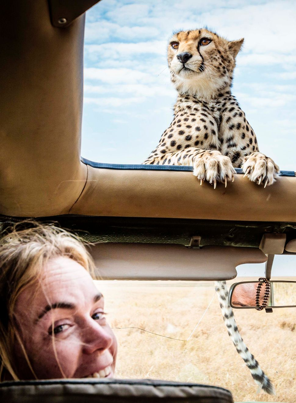 Bobby-Jo Clow with the Cheetah resting on the roof. (BOBBY-JO CLOW PHOTOGRAPHY/CATERS NEWS)