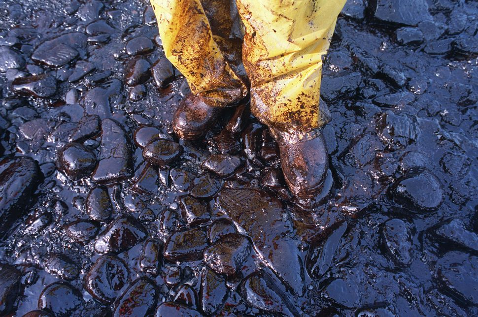Thick crude oil washed that up on the cobble beach of Evans Island sticks to the boots and pants of a local fisherman in Prin