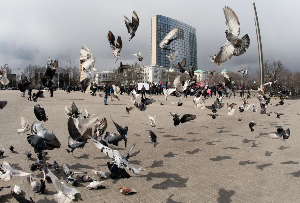 Pigeons fly as Pro-Russian activists hold a rally in front of Lenin memorial in Donetsk on March 29, 2014. Russia pledged it