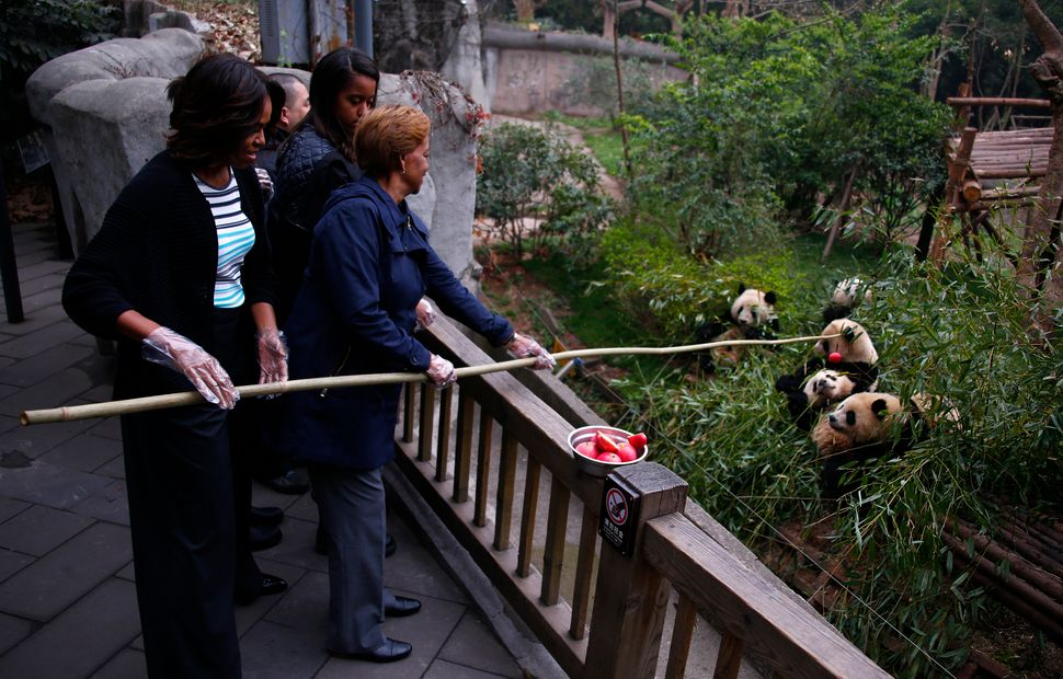 CHENGDU, CHINA - MARCH 26: U.S. first lady Michelle Obama (L) watches as her mother Marian Robinson (R) feeds apples to giant