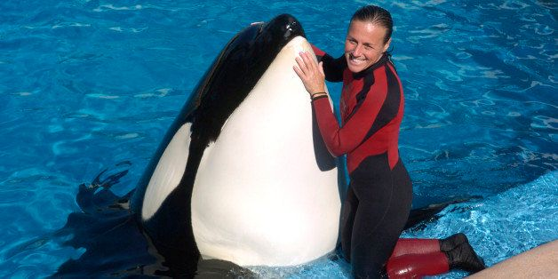 Dawn Brancheau, a whale trainer at SeaWorld Adventure Park, shown performing on December 30, 2005, was killed in an accident