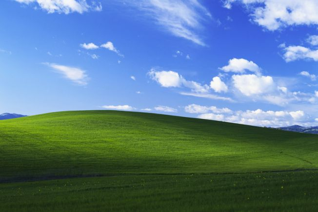 "If this picture looks familiar, it's because it might have been <a href=""https://www.huffpost.com/entry/windows-xp-bliss-micr"