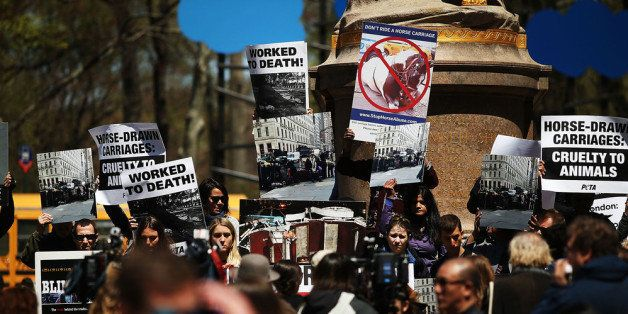 NEW YORK, NY - APRIL 24: People protest against the use of carriage horses at Central Park on April 24, 2014 in New York City