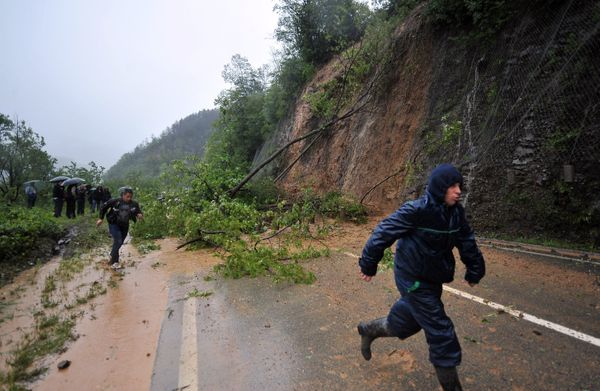 People run past trees which collapsed onto a road after a landslide near the village of Topcic Polje, near the central Bosnia
