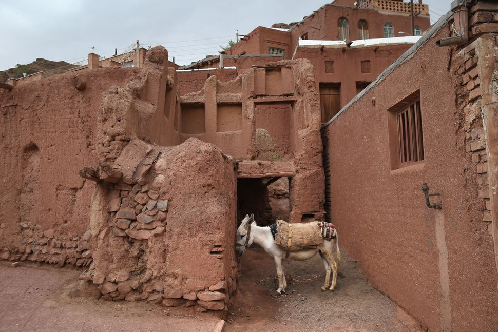 ABYANEH, IRAN - JUNE 03:  A donkey stands amongst traditional mud brick homes on June 3, 2014 in the ancient mountain village