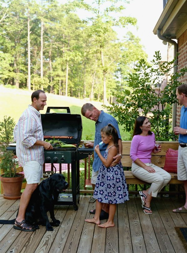 Avoid scraps from the grill. While tempting to our pets, any sudden change to your dog's diet can cause stomach upset. In add