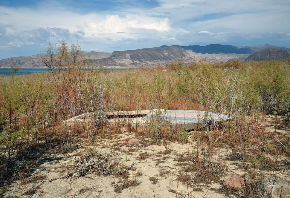 Shrubs grow around a boat sitting in mud in an area that used to be underwater near Boulder Beach on July 13, 2014 in the Lak
