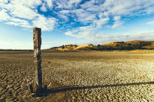 Coyote Hills RP, Fremont, CA July 23, 2014