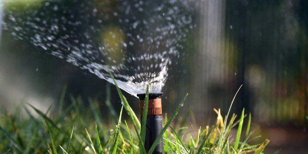 Sprinklers water a patch of grass on the sidewalk in front of a house in Alhambra, California, on July 25, 2014. In the lates