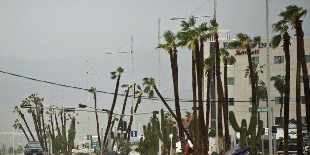 View of main road leading to Cabo San Lucas seen after hurricane Odile knocked down trees and power lines in the city, in Mex