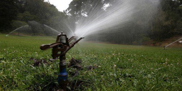 SAN FRANCISCO, CA - JULY 15:  Sprinklers water a lawn in Golden Gate Park on July 15, 2014 in San Francisco, California. As t
